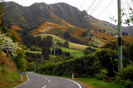 Town road mountain view, New Zealand