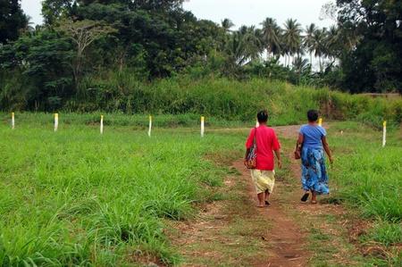 Nuova Guinea: Le donne camminano in strada sterrata, Papua Nuova Guinea