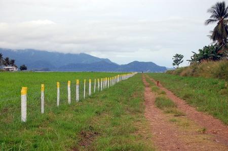 Nuova Guinea: Strada sterrata lungo campo di aviazione recinzione, Papua Nuova Guinea