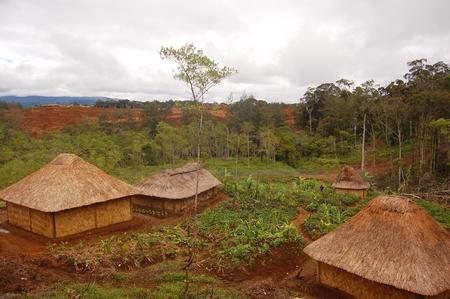 Nuova Guinea: Villaggio tradizionale in altopiani della Papua Nuova Guinea Archivio Fotografico