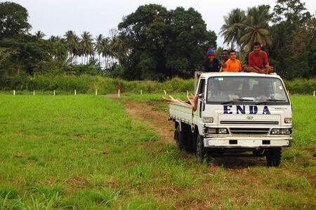new guinea: Persone su camion bianco, Papua Nuova Guinea Editoriali