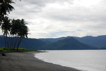 Sand sea coast with palms mountain view, Magarida village, Papua New Guinea