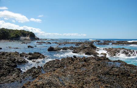 Rocks at low tide ocean coast, New Zealand