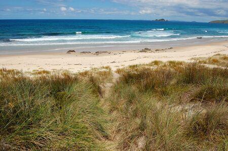 north island: White sand beach sea coast in outback of New Zealand, North Island, Northland