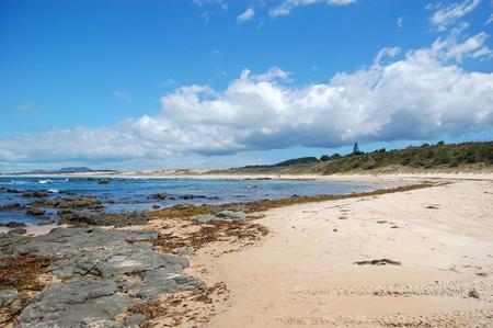 Stony white sand beach at New Zealand
