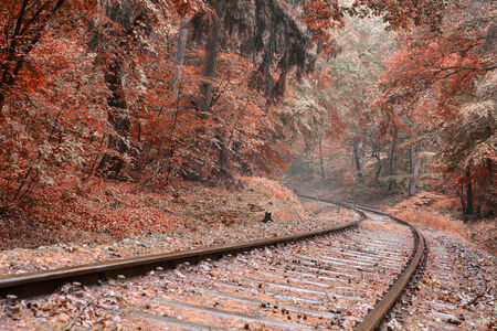 Image of a railway track with a sweeping curve edited in Autumn colours with a toned look photo