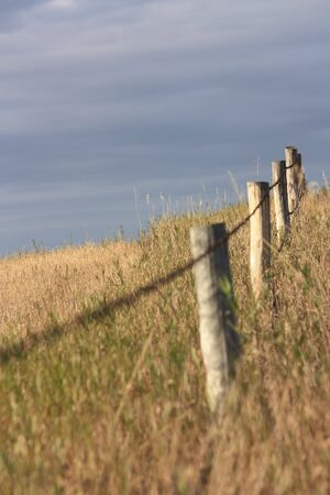 barbed wire fence on the prairie photo