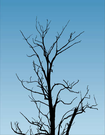 tree with naked branch Stock Vector - 1827696
