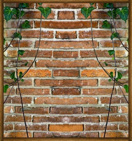 Brick Wall with Plants Decorative Background photo