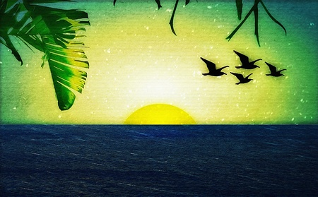 Photo collage of a sunset with birds and palm trees.Vector and Pixel art technique.