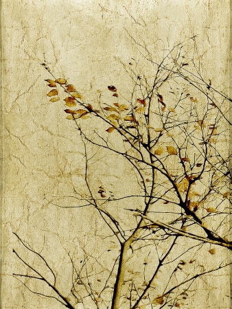 texturized: Inspired Photo Collage of a tree with leaves and branches in a texturized paper background. Stock Photo