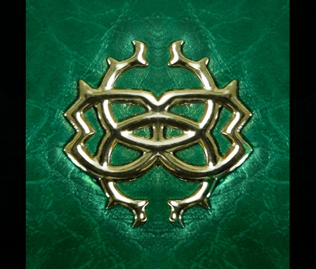 Elegant composition of a golden tones metal symbol incrusted in green leather texture with black borders. photo