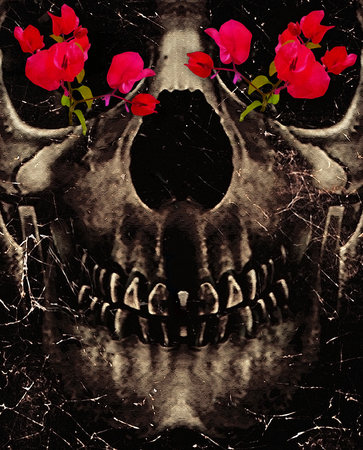 irony: Dark photo collage concept artwork showing a dark skull with a happy mouth expression and his eyeballs cover wiht red flowes