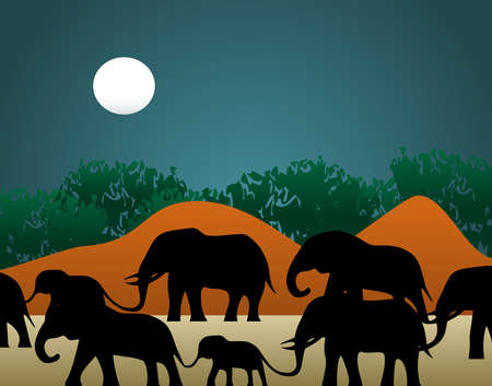 familiy: Vector illustration of a family of elephants walking through the jungle in the night. Stock Photo