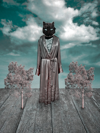 catwoman: Digital photo collage and manipulation technique surreal scene in cold tones with a catwoman with no hands