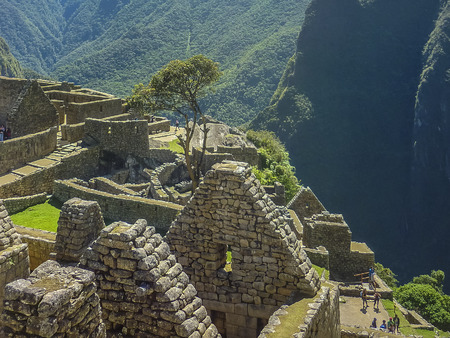 peru architecture: High angle view of architecture and nature surrounded from the highs of the most famous landmark of Cuzco in Peru, the ancient inca city of Machu Picchu.