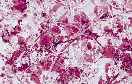 Digitale collage techniek levendige bloemen collage motief patroon in magenta adn witte tinten. Stockfoto
