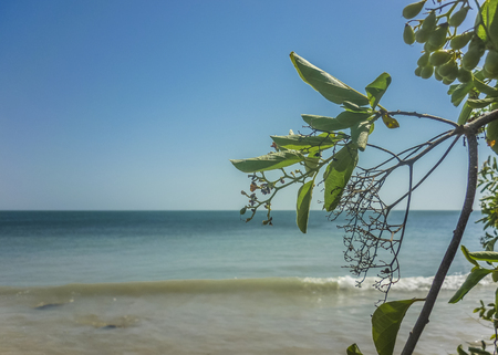 paradise place: Beautiful sunny day at paradise tropical island in Cartagena, the most famouse watering place of Colombia.