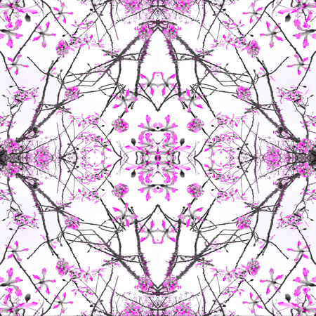 photo collage: Digital photo collage and manipulation technique crafted geometric nature motif seamless pattern in magenta and black against white background.
