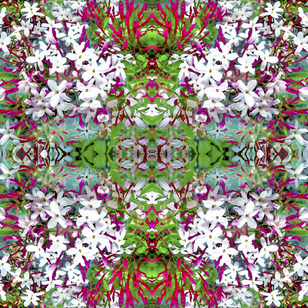 manipulated: Digital collage and manipulation technique  geometric modern floral seamless pattern design in mixed colors.