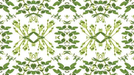manipulation: Digital collage and manipulation technique geometric modern floral seamless pattern design in green and white colors.