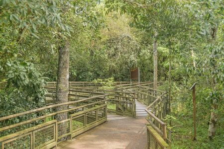 argentinian: Landscape from tourstic road of Iguazu Park in argentinian border.