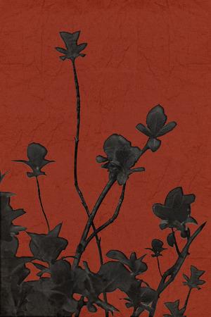 edited photo: Minimalistic style edited nature photo black plants isolated against red textured background. Stock Photo