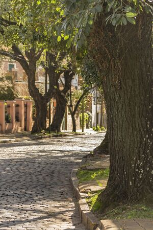 Peaceful urban scene with cobblestone street and trees in the elegant municipality of San Isidro in Buenos Aires, Argentina