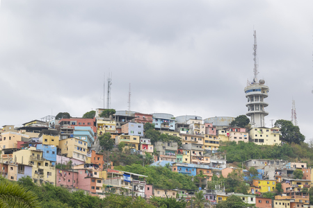 guayaquil: Low angle view of picturesque colored poor houses at the top of a hill at Cerro Santa Ana in Guayaquil, Ecuador.