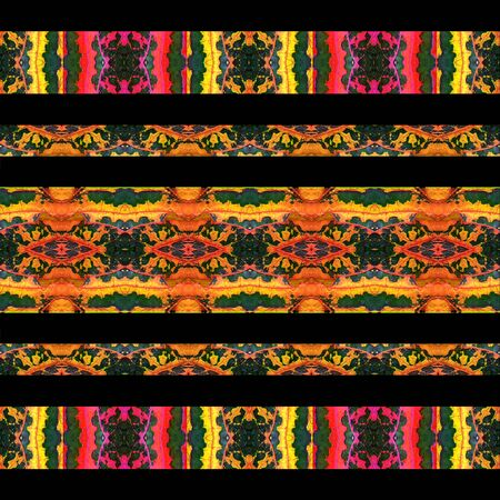 manipulation: Digital photo collage and manipulation technique horizontal stripes pattern stylized ornate floral motif in vibrant mixed colors against black borders background Stock Photo