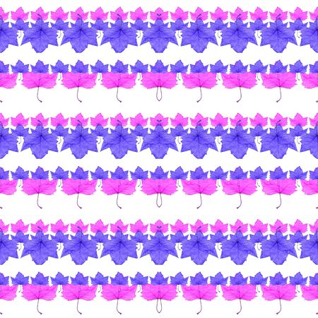 manipulation: Digital collage and photo manipulation technique geometric floral collage stripes seamless pattern design in vivid and saturated cyan and pink colors against white background. Stock Photo