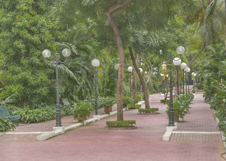guayaquil: Park runner surrounded by tropical plants and trees at the historic park, a touristic attraction located in Guayaquil, Ecuador.