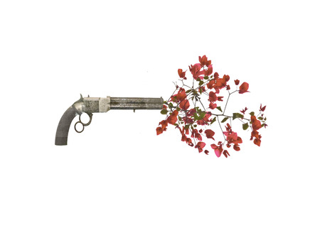 firing: Love or peace conceptual photomontage composition of ancient gun firing red flowers. Stock Photo
