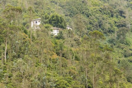 highs: Distant view of group of buildings in the highs and surrounded by leafy nature in Banos, Ecuador.