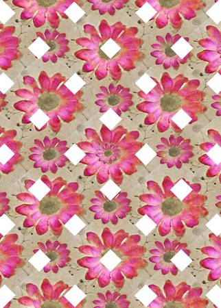 digital design: Digital abstract geometric check pattern background with floral design