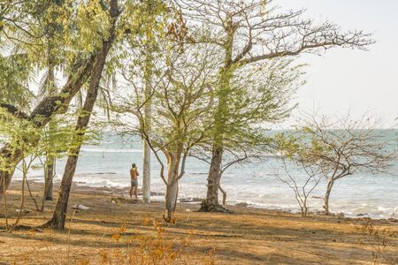 lonley: Man watching the sea at park coastline in Fortaleza, Brazil