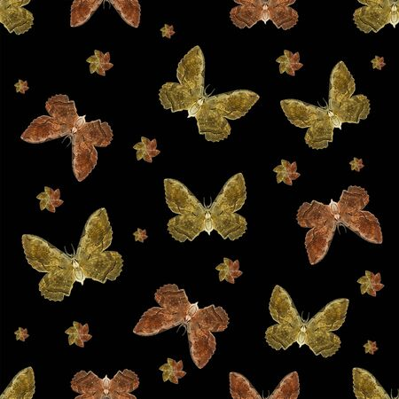 conversational: Digital photo collage moth motif pattern design in warm colors against black background.