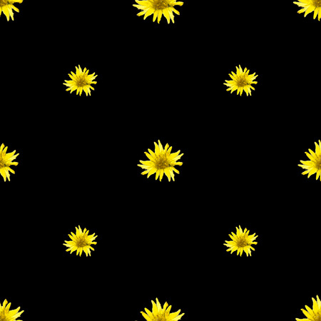 Digital photo collage technique daisy floral motif seamless pattern design in yellow and black tones