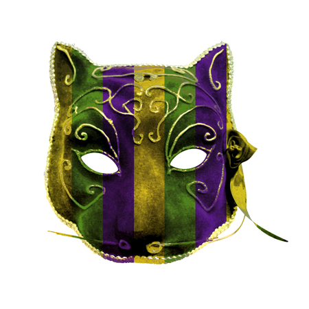 Hand made beatuy venetian style catwoman mask colored with mardi gras motif