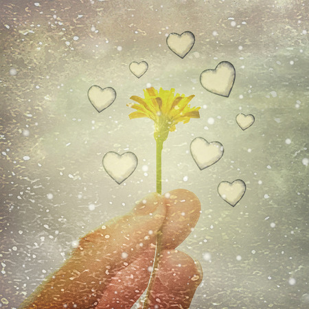 photography backdrop: Dreamy scene of hand holding daisy flower surrounded by flying hearts against grungy background Stock Photo