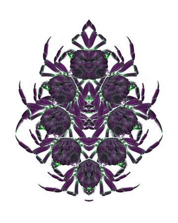 manipulated: Digital photo collage technique crab motif ornate graphic object design in violet tones Stock Photo