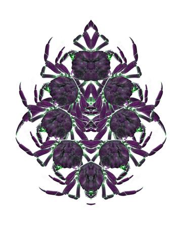 Digital photo collage technique crab motif ornate graphic object design in violet tones Stock Photo