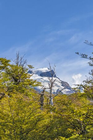 Patagonia landscape scene with snowy mountains as main subject, Argentina