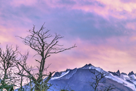 Patagonia landscape twilight scene with snowy andes range mountains as main subject, El Chalten, Argentina