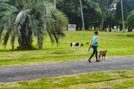 COLONIA, URUGUAY, JANUARY - 2016 - Adult woman walking at park with his dog, Colonia, Uruguay Imagens