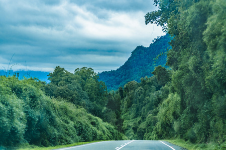 Leafy patagonian highway at chilean territory