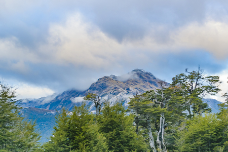 Forest and andes mountains landscape scene at Chilean Patagonian territory