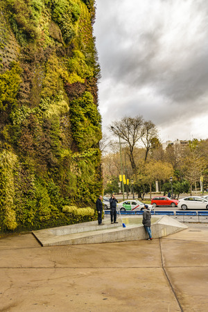 MADRID, SPAIN, DECEMBER - 2017 - Vertical garden wall made it by Patrick Blanc at Madrid city, Spain Editorial
