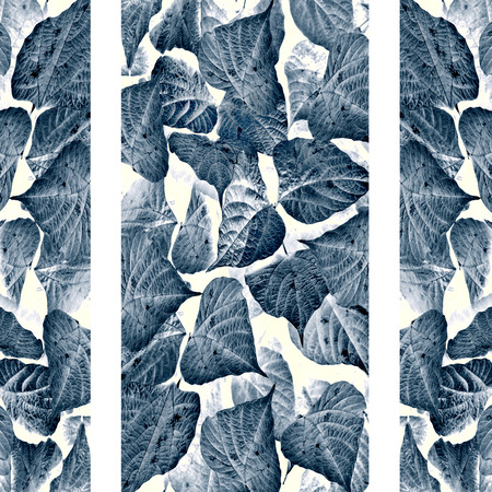 Digital photo collage and manipulation technique vetical stripes pattern with floral motif in indigo colors against white background. Stock Photo