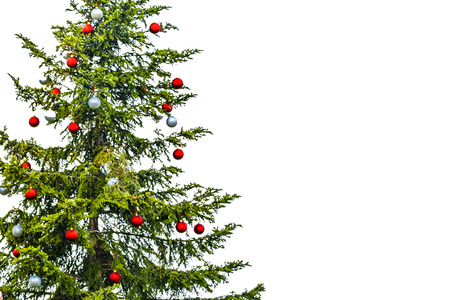 Natural christmas tree isolated on white background Stock Photo